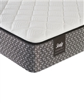 "Sealy 5.5"" Memory Foam Firm Mattress Queen"