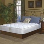 Sealy Plush Queen Mattress Set